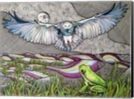 Owl And Frog Fine-Art Print