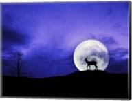 Big Moon Fine-Art Print