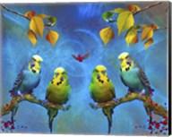 Color Birds Fine-Art Print