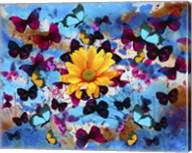Daisy And Butterflies Fine-Art Print