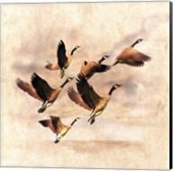 Birds Fly Away 1 Fine-Art Print