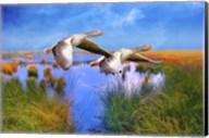 Birds In Nature Fine-Art Print