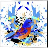 Bird Collection 13 Fine-Art Print