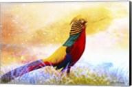 Bird Collection 20 Fine-Art Print
