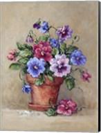 Pansy Pot Fine-Art Print