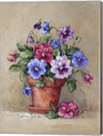 Pansy Pot Fine-Art Print