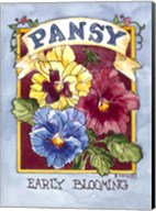 Large Pansy-Seed Packet Fine-Art Print