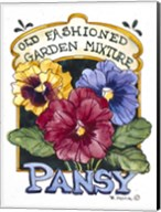 Old Fashioned Pansy-Seed Packet Fine-Art Print