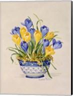 Blue and White Porcelain Crocus Fine-Art Print