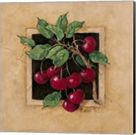 Cherry Square Fine-Art Print
