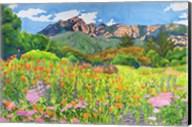Santa Barbara Botanic Garden Fine-Art Print