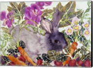 Rabbit with Carrots Fine-Art Print