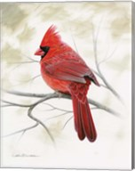 Beauty In Red Fine-Art Print