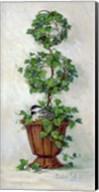 Ivy Topiary II Fine-Art Print