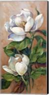 Magnolia Accents I Fine-Art Print