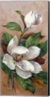 Magnolia Accents II Fine-Art Print