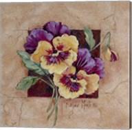 Pansy Square Fine-Art Print