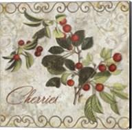 Pastoral Fruits III Fine-Art Print