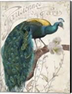 Les Paons II Fine-Art Print