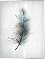 Feathered Dreams 1 Fine-Art Print