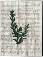 Musical Botanical 1 Fine-Art Print