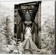 Along the Tracks 1 Fine-Art Print