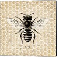 Honeycomb No 24 Fine-Art Print