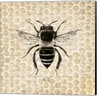 Honeycomb No 32 Fine-Art Print