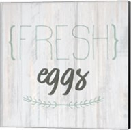 Fresh Eggs Fine-Art Print