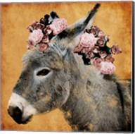 Pretty Donkey Fine-Art Print