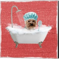 Steamy Bath 1 Fine-Art Print