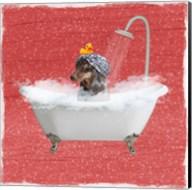 Steamy Bath 2 Fine-Art Print