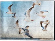 Fly With Friends Fine-Art Print