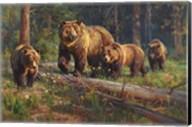 Wilderness Matriarch Fine-Art Print