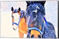 Snow Horses Fine-Art Print
