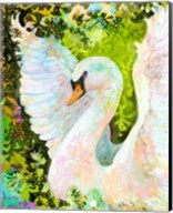 Swan Fine-Art Print