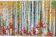 Fall Season 2 Fine-Art Print