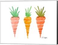 Three Carrots Fine-Art Print