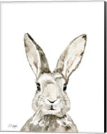 Grey Bunny Fine-Art Print