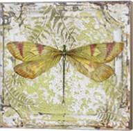 Dragonfly On Tin Tile Fine-Art Print