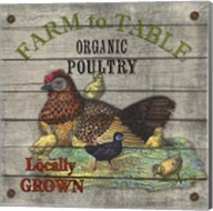 Farm to Table - Poultry Fine-Art Print