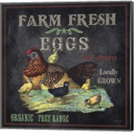Farm Fresh Eggs Fine-Art Print