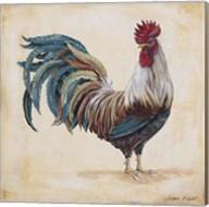 Rooster - F Fine-Art Print