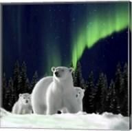 Polar Family 2 Fine-Art Print
