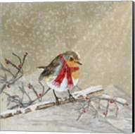 Robin Fine-Art Print