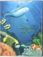 The Coral Reef Fine-Art Print