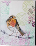 Robin on White 2 Fine-Art Print
