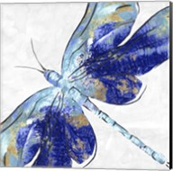 Blue Dragonfly Fine-Art Print