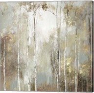 Fine Birch I Fine-Art Print