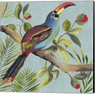 Paradise Toucan I Fine-Art Print